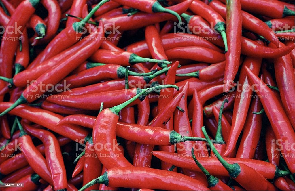 Bunch of Red Chillies stock photo