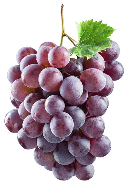 Bunch of red grapes. stock photo