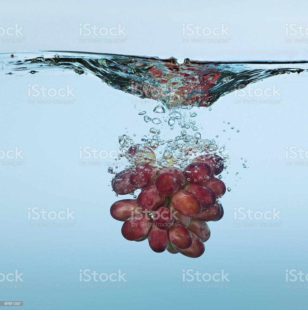 Bunch of red grapes splashing in water royalty-free stock photo