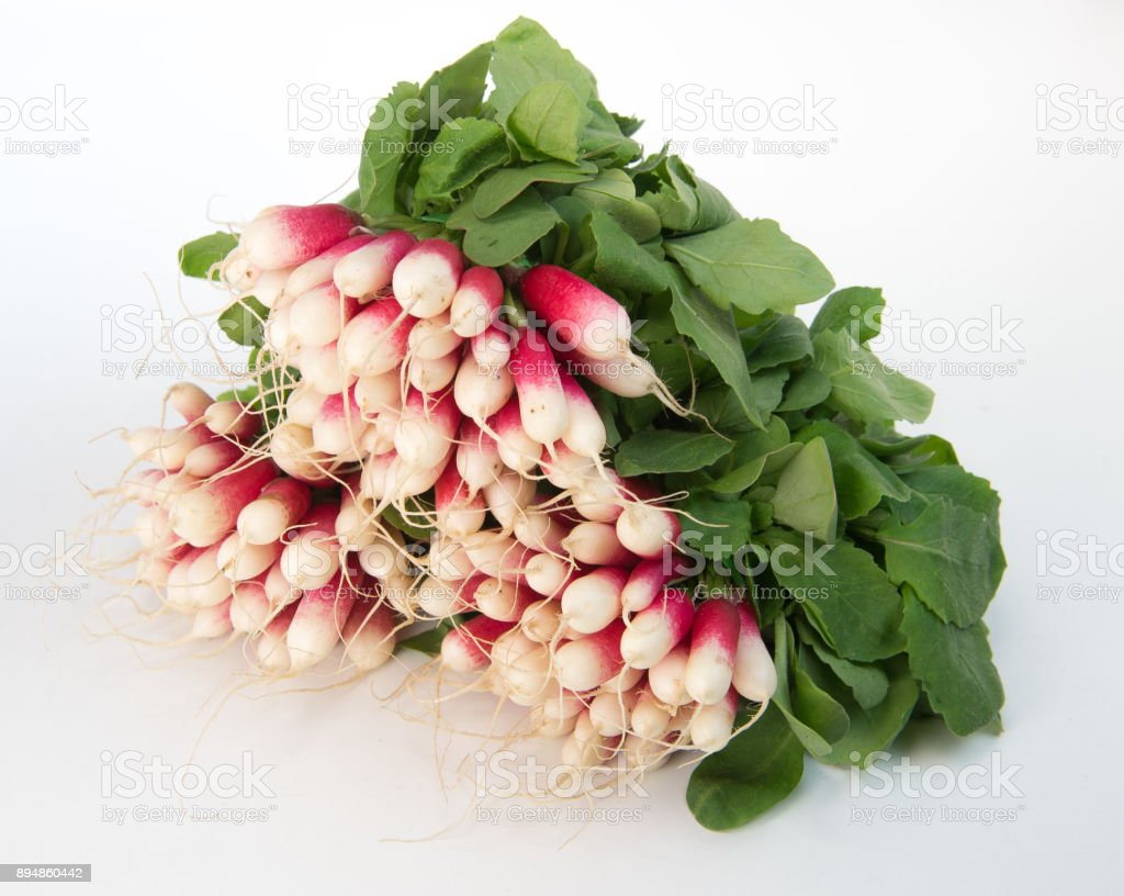 Bunch of red radish on white background edible root vegetable stock photo