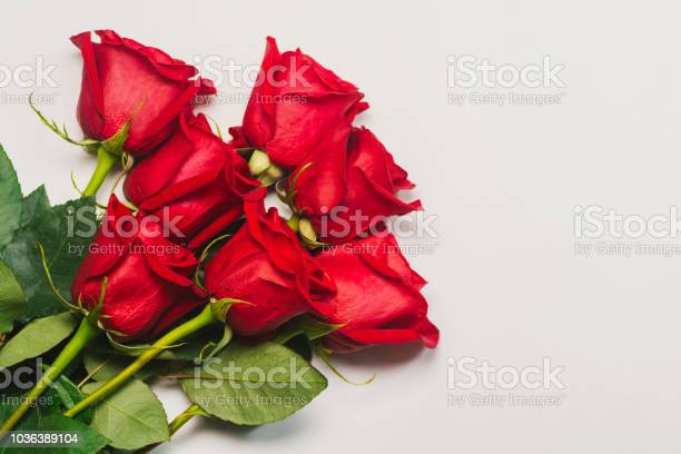 Bunch of red roses on white background picture id1036389104?b=1&k=6&m=1036389104&s=612x612&h=sbswas3txrp0ctph kidafabgoyyg f5 e2xbfwey m=