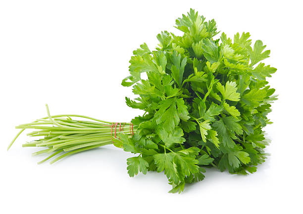 bunch of ripe parsley isolated - parsley stock photos and pictures