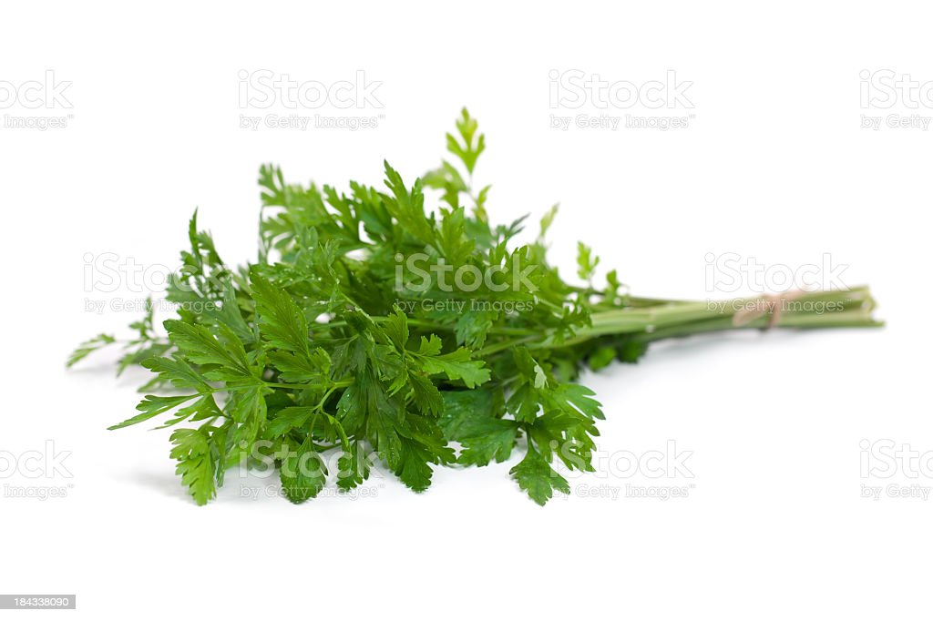 Bunch of ripe parsley isolated royalty-free stock photo