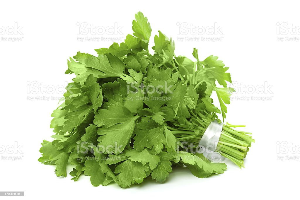 Bunch of ripe parsley royalty-free stock photo