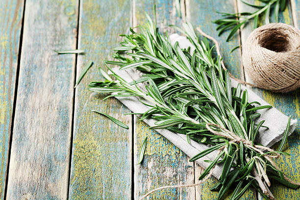 Bunch of rosemary with copy space for text stock photo