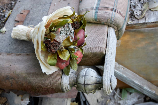Bunch of rotten fruit and wilted flowers as a symbol of a destroyed old life Bunch of rotten fruit and wilted flowers as a symbol of a destroyed old life disavow stock pictures, royalty-free photos & images
