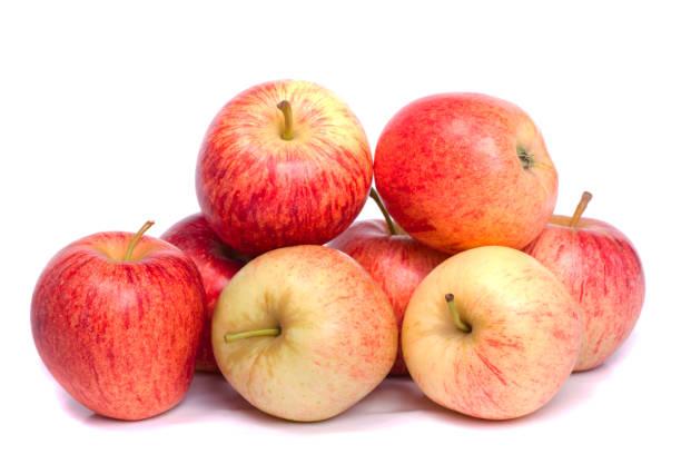 bos van koninklijke gala appels - appel stockfoto's en -beelden