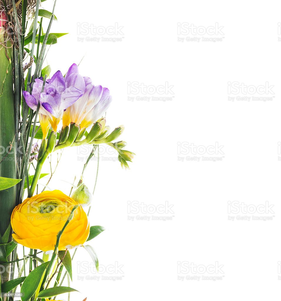 bunch of summer flowers, floral border,isolated stock photo