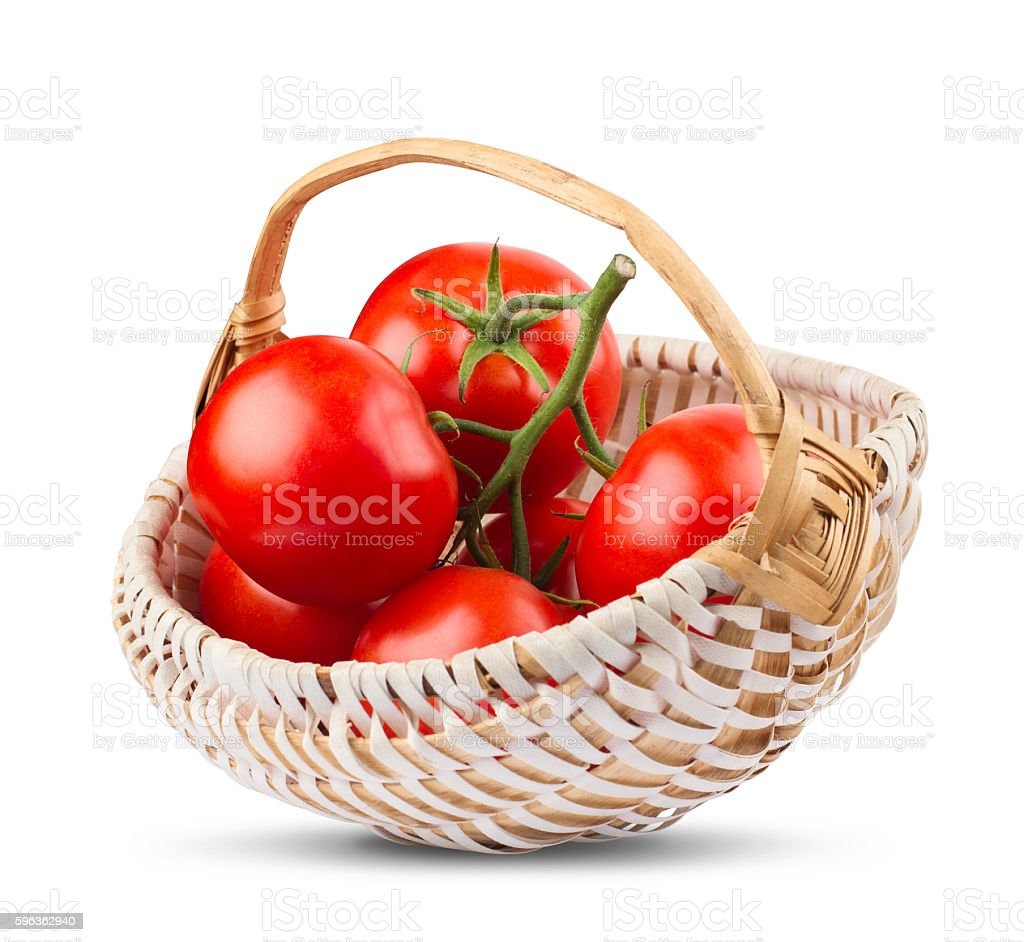 bunch of tomatoes in wood white basket royalty-free stock photo