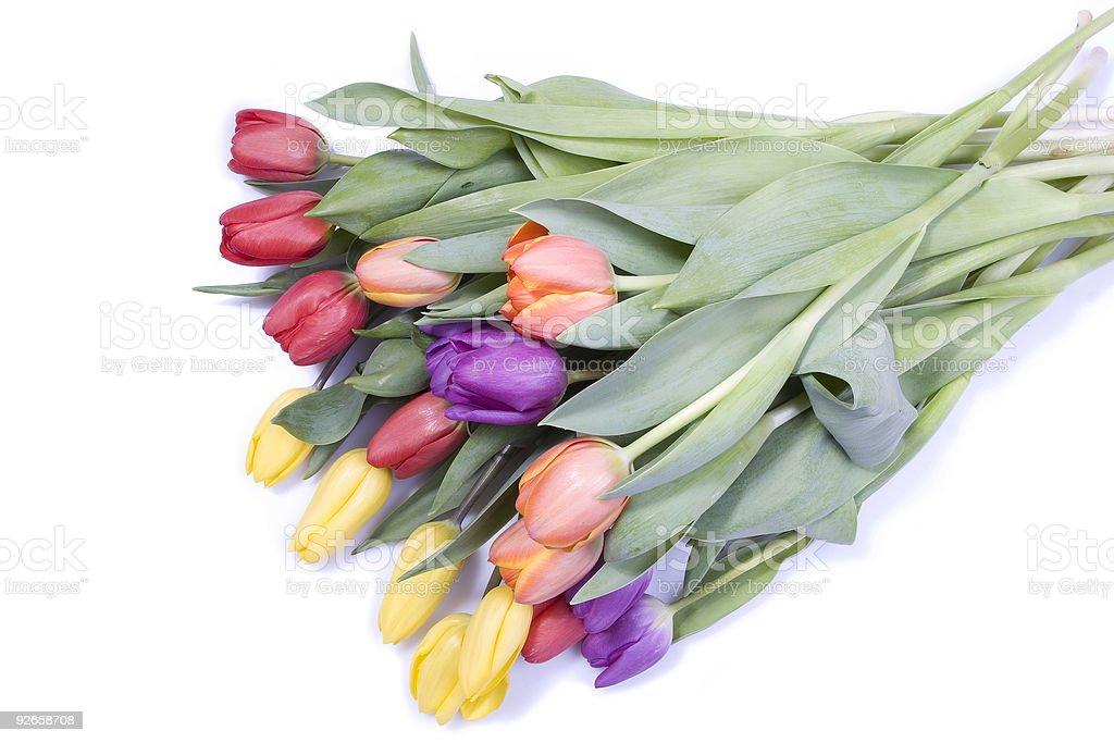 Bunch of tulips stock photo