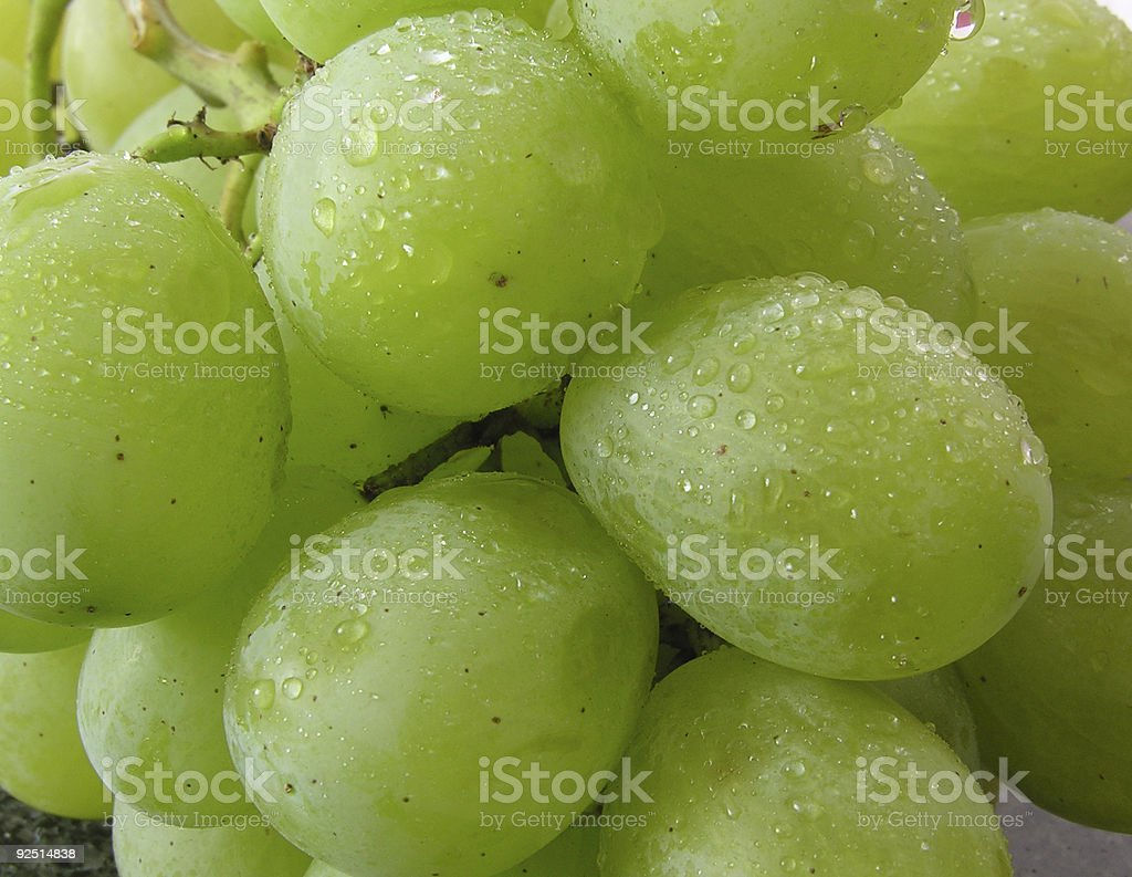 bunch of wet grapes royalty-free stock photo