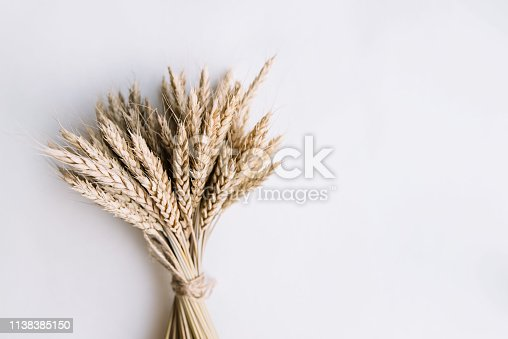 A bunch of wheat tied up together on the white background, flat lay, minimalistic view