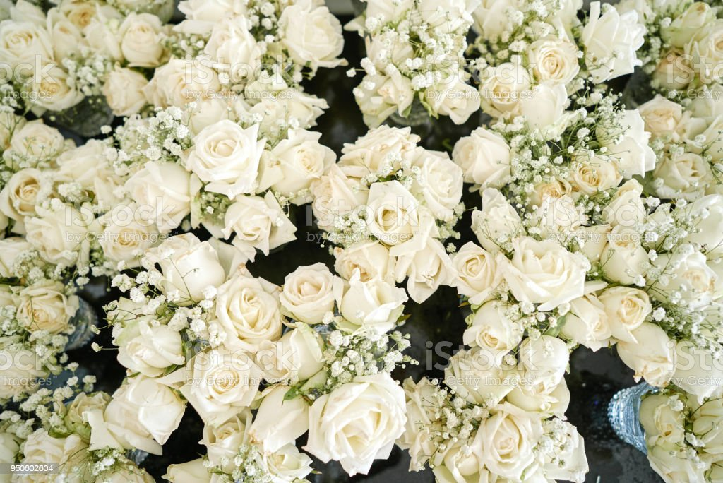 A Bunch Of White And Cream Roses The Babys Breath Flowers Floral For Wedding Venue Decoration Top View Stock Photo Download Image Now Istock