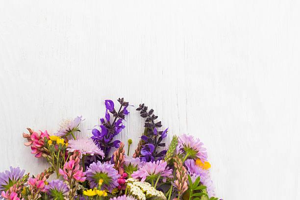 Bunch of wildflowers on white background picture id579244192?b=1&k=6&m=579244192&s=612x612&w=0&h=ccp4ubzbquowsvvn0ypglariygitackmh6kkyfw5fg8=