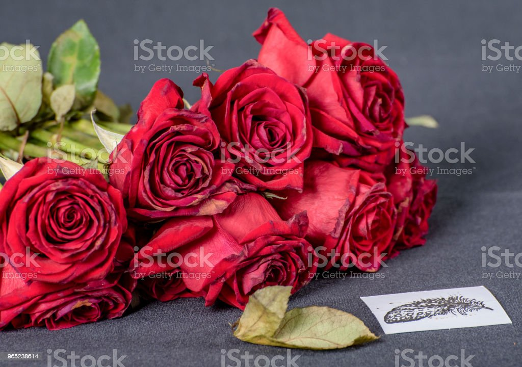 Bunch of wilting red roses next to a hand made card. royalty-free stock photo