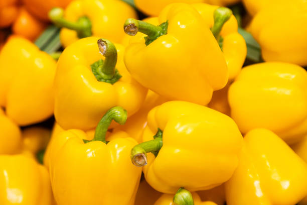 Bunch of yellow peppers in farmer's market or grocery store. Vegetable background. Spicy and sweet plant for sustainable diet. Bunch of yellow peppers in farmer's market or grocery store. Vegetable background. Spicy and sweet plant for sustainable diet yellow bell pepper stock pictures, royalty-free photos & images