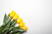 Bunch of yellow tulips on white wooden background