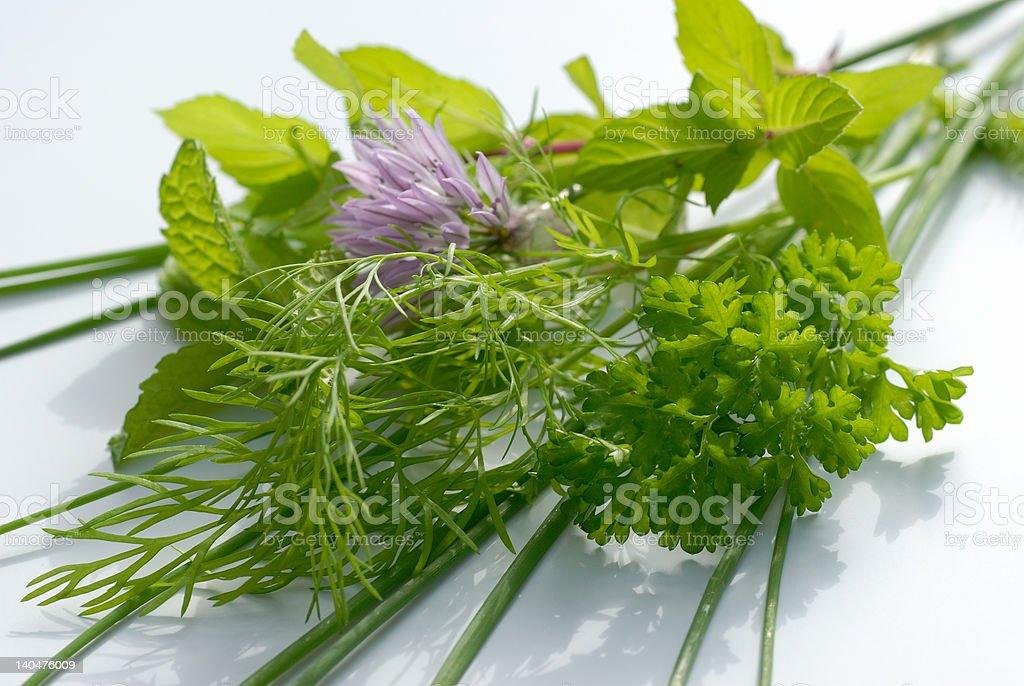 Bunch pot-herbs stock photo