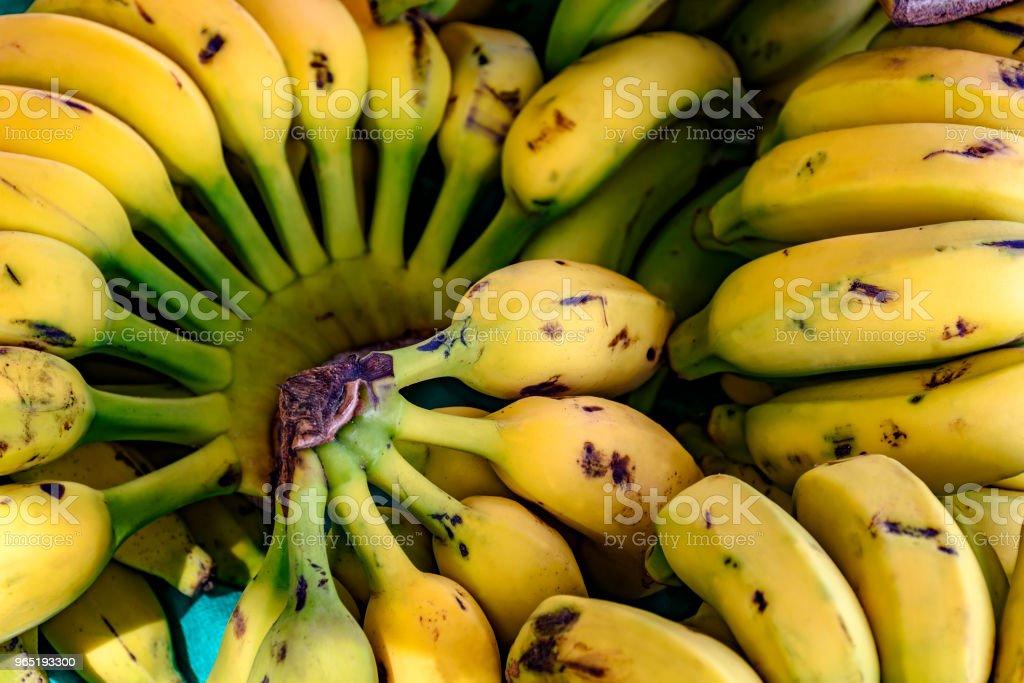 Bunches of bananas zbiór zdjęć royalty-free