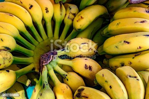 Bunches Of Bananas - Stockowe zdjęcia i więcej obrazów Aranżować