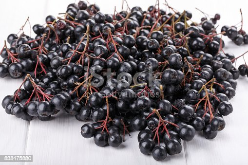 istock Bunches of black chokeberry ( Aronia ) on white background 838475880