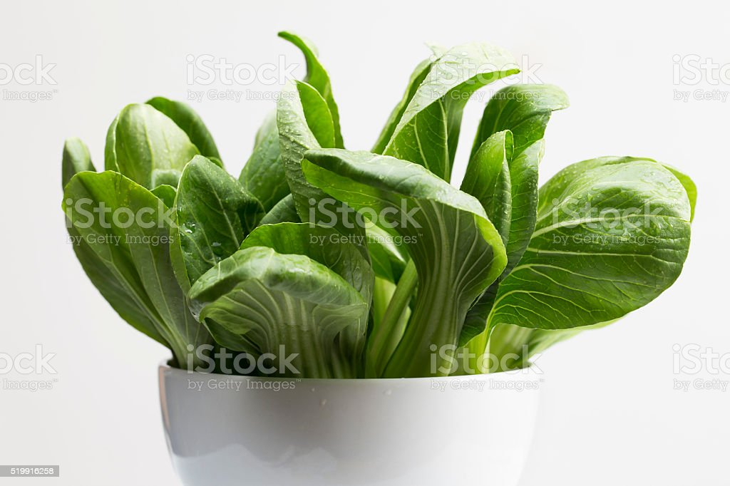 Bunches of Bok Choy stock photo