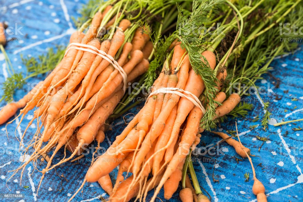 Bunches of Carrots At Farmers Market stock photo