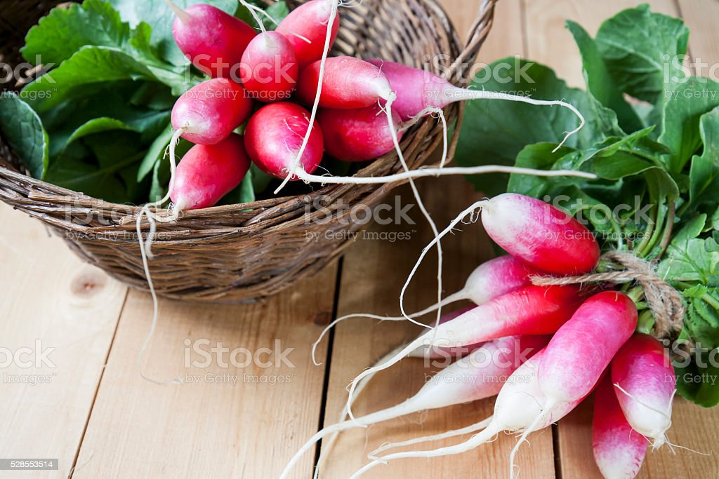 Bunches of fresh radishes in a wicker basket stock photo