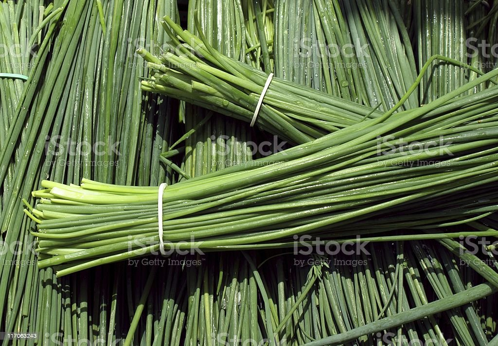 bunches of green early chive royalty-free stock photo