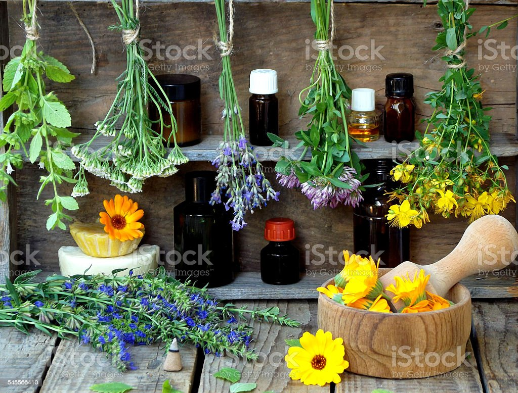 Foto de Bunches Of Healing Herbs Herbal Medicine e mais