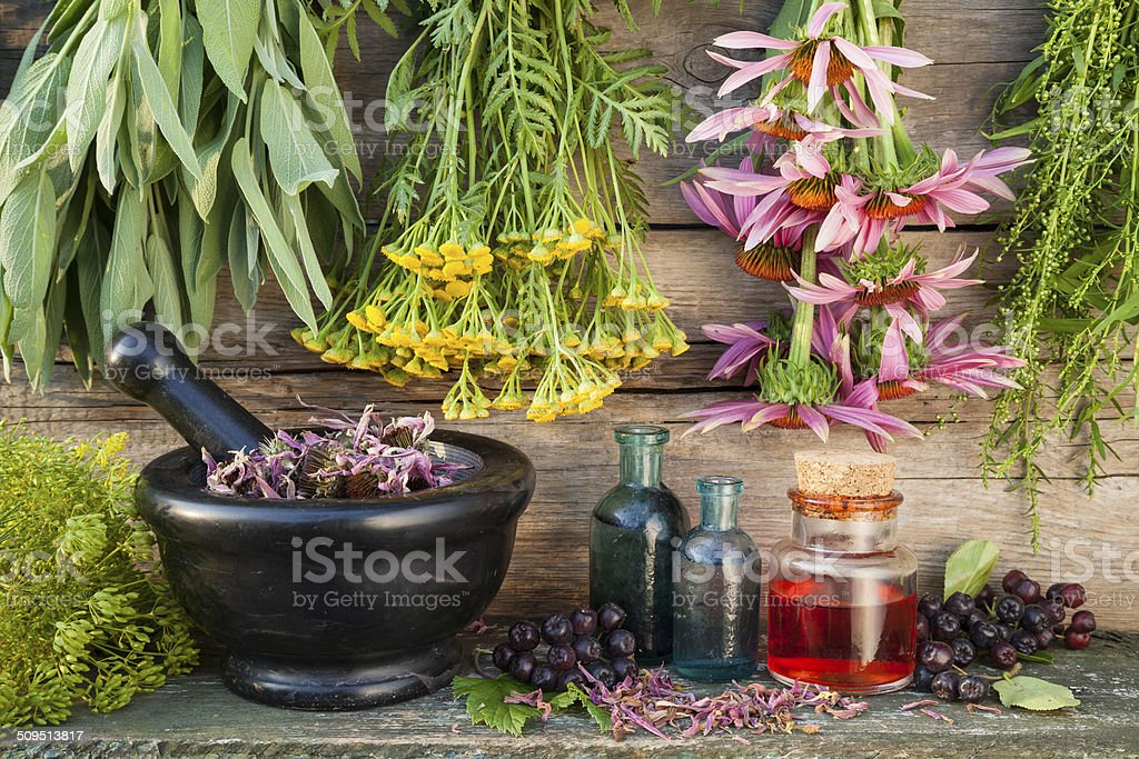 bunches of healing herbs on wooden wall and mortar stock photo