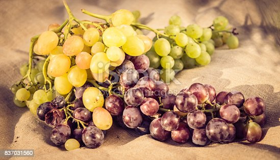 924487256 istock photo Bunches of sweet muscat grapes against a linen cloth 837031560