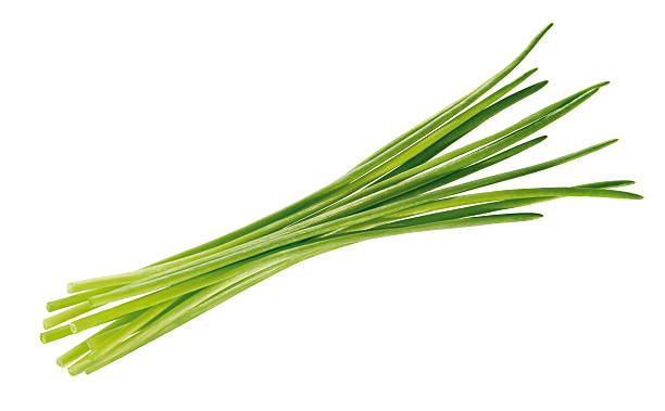 bundle of chives stock photo