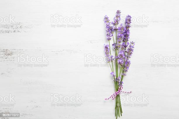 Bundle of lavender on old wooden board painted white picture id902677072?b=1&k=6&m=902677072&s=612x612&h=xcrraetngck3z hm8cduqyghknnaskzlftcd6jlliyo=
