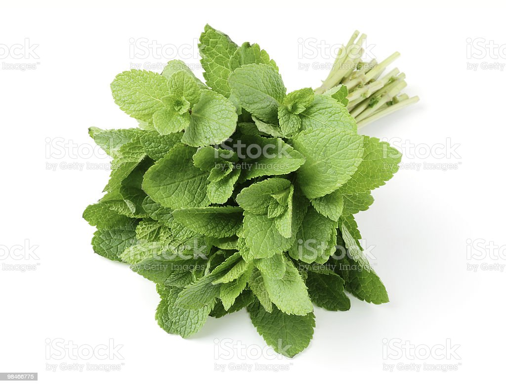 A bundle of mint on a white background royalty-free stock photo