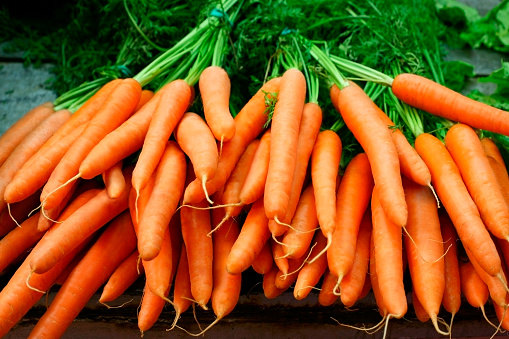 Bunches of organic carrots on a farmer market. Shallow depth of field.