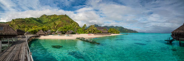 Bungalow lagoon panorama Moorea Island is a travel destination for tourist from all over the world wanting to escape to an idyllic tropical island in the South Pacific Ocean. The island is in the windward archipelago of French Polynesia near Papeete, Tahiti. south pacific ocean stock pictures, royalty-free photos & images
