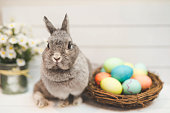 Bunny standing guard over woven basket of colored Easter eggs.