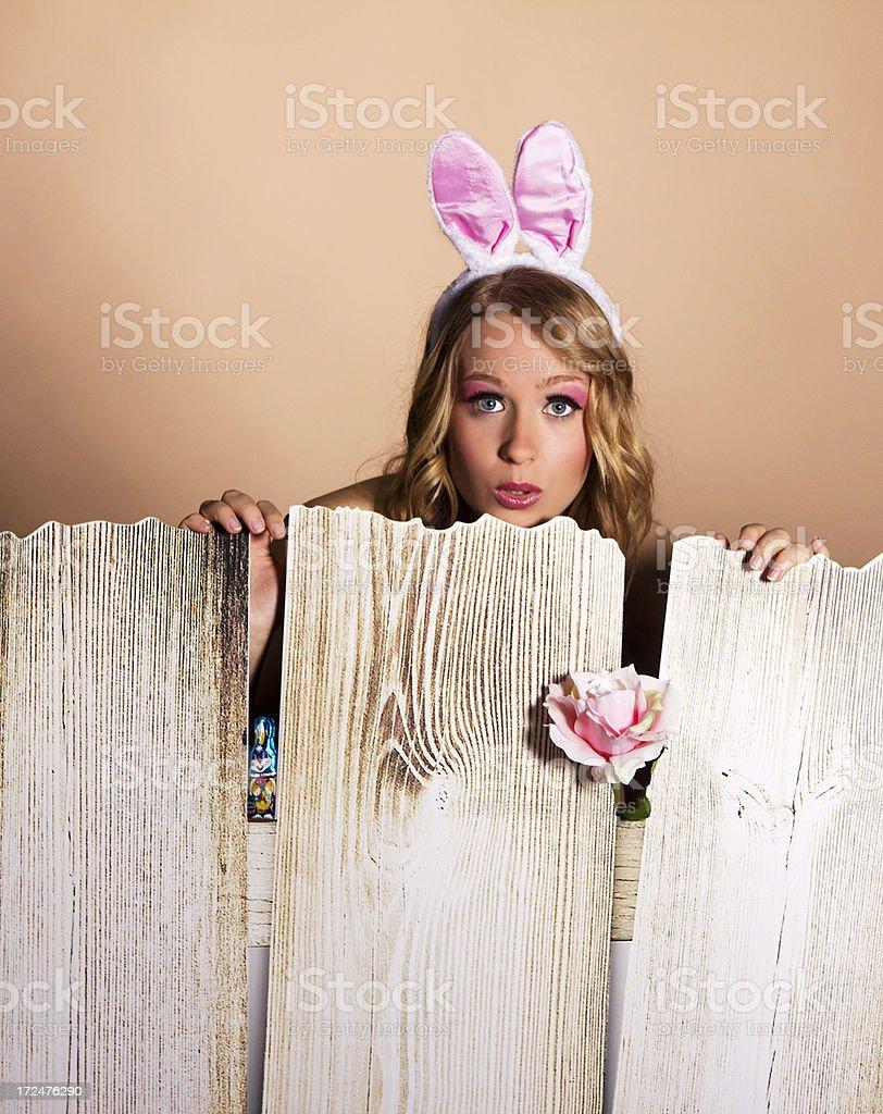 Bunny Girl royalty-free stock photo