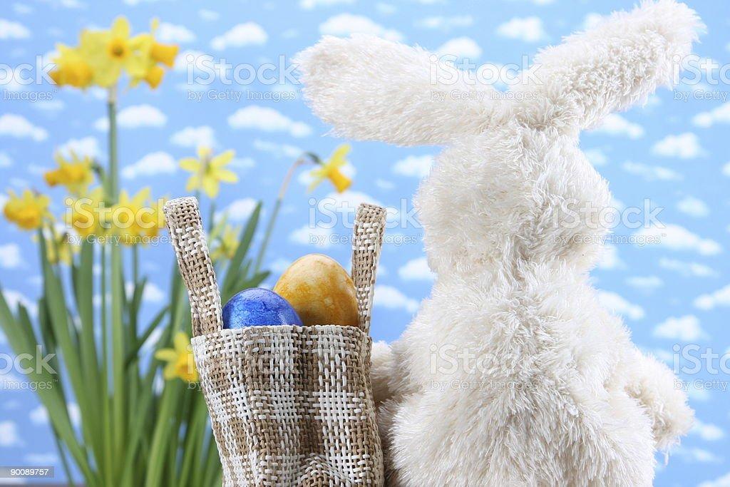 Bunny on the Way royalty-free stock photo