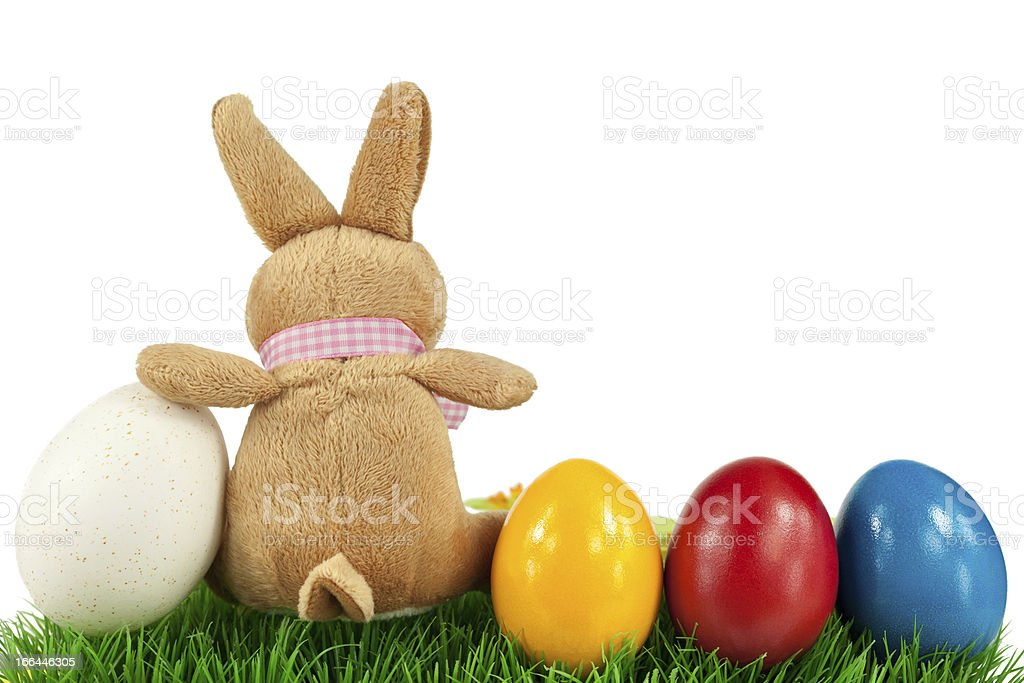 Bunny with colorful Easter eggs royalty-free stock photo