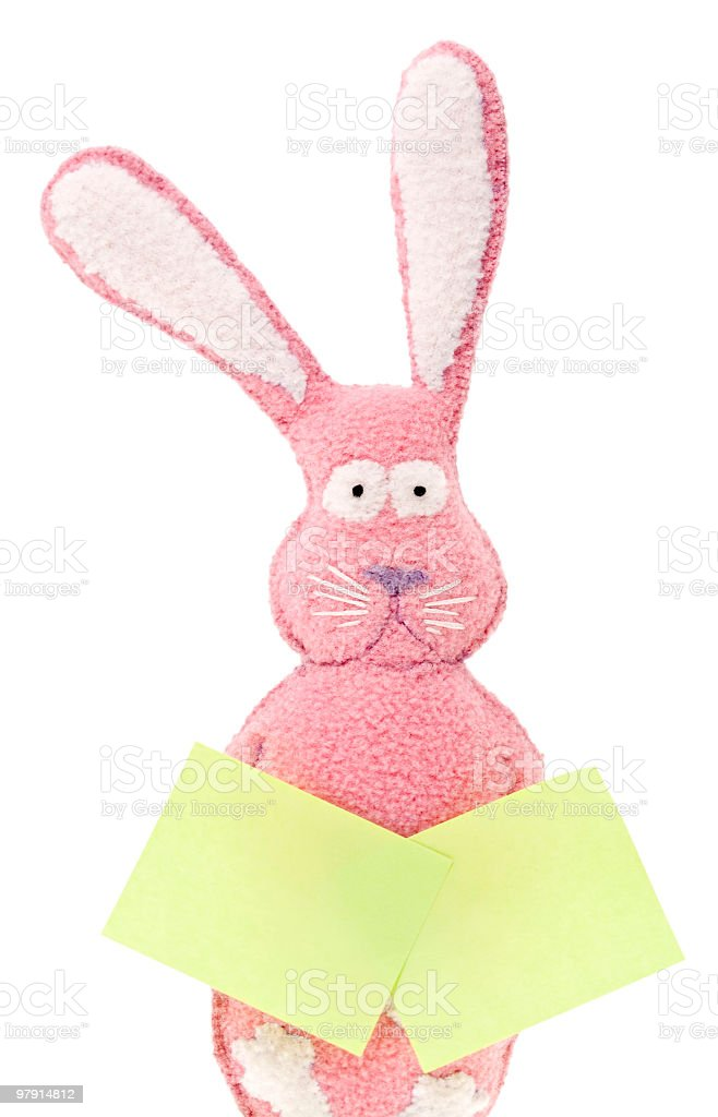 Bunny with two stickers royalty-free stock photo