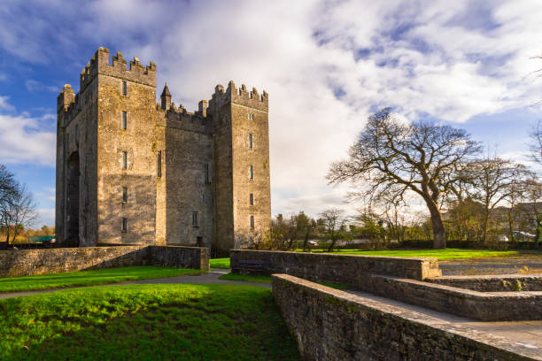 bunratty castle in co. clare - county clare stock pictures, royalty-free photos & images