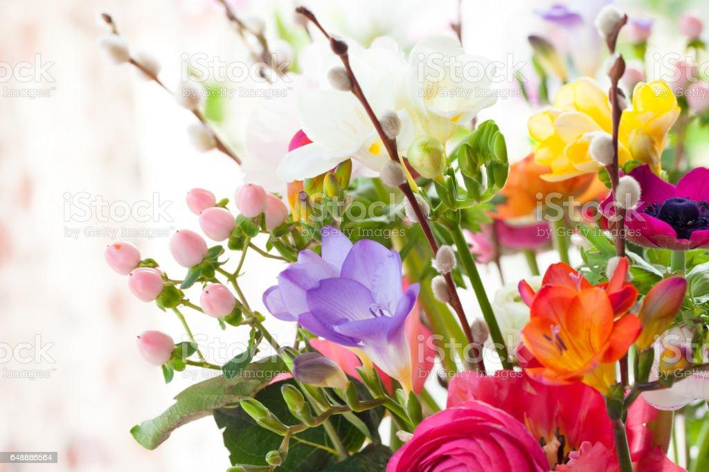 Bunte Fruehlingsblumen – Foto