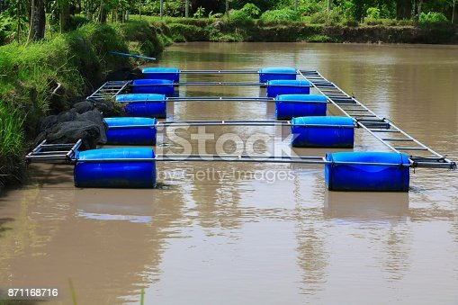 istock buoy in fish farm 871168716