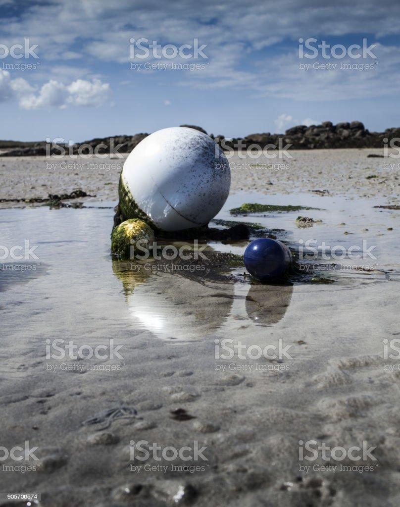 Buoy in low tide with green algae, coastline in Lilia, Brittany, France stock photo