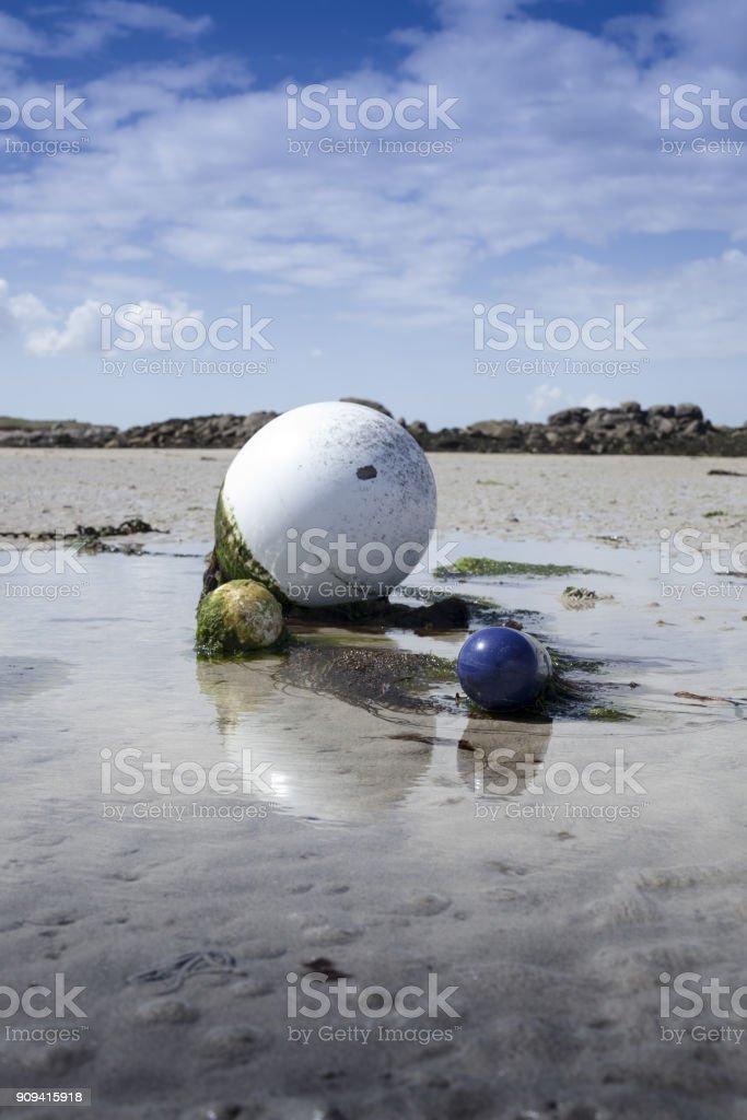 Buoy in low tide with green algae, coastline in Lilia, Brittany, France. stock photo