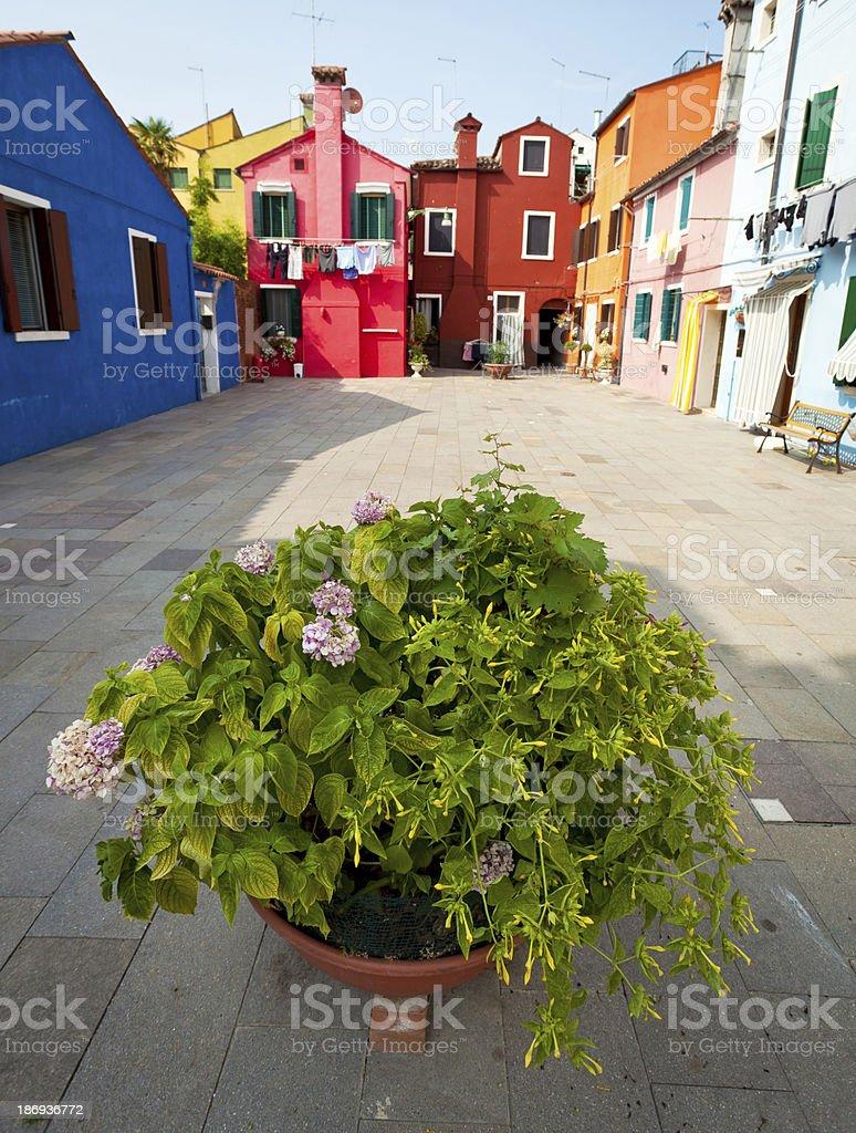Burano Island, Italy royalty-free stock photo