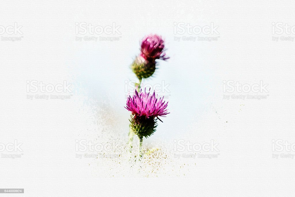 Burdock.  Design in the style  watercolor on canvas. stock photo
