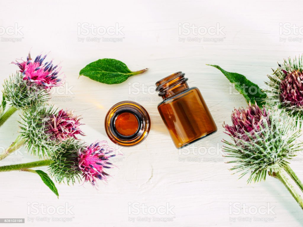 burdock oil in small glass bottle, top view, copyspace stock photo